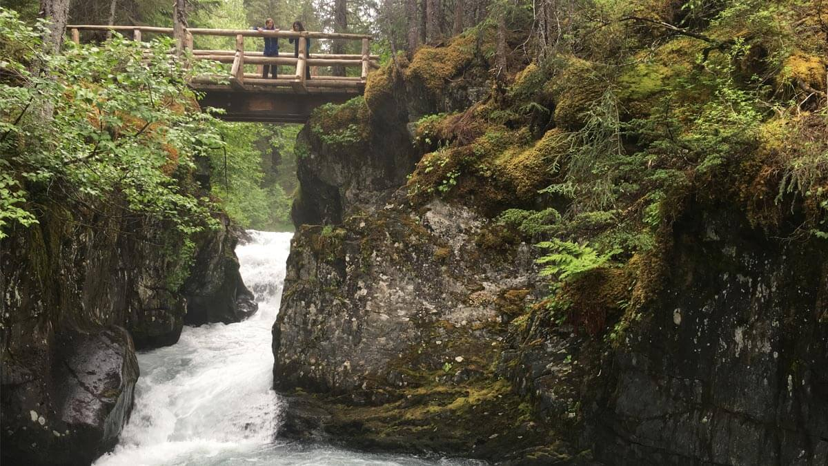 Guided nature hike at Alyeska